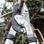 Ножица за клони 1
